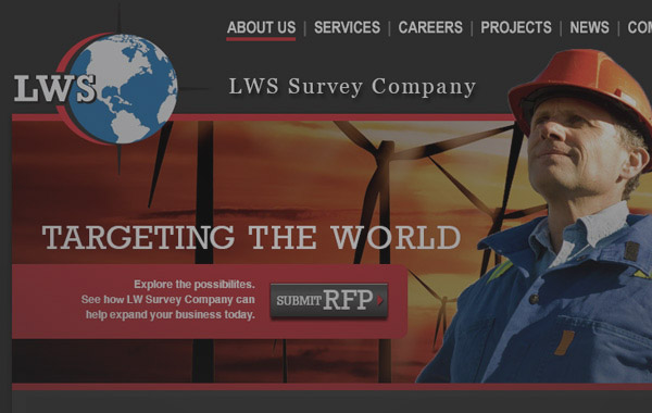 LWS Survey